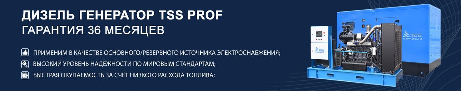 Дизельные генераторы TSS Prof